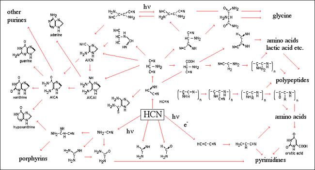 Hydrogen Cyanide Molecular Orbital Diagram Diy Enthusiasts Wiring