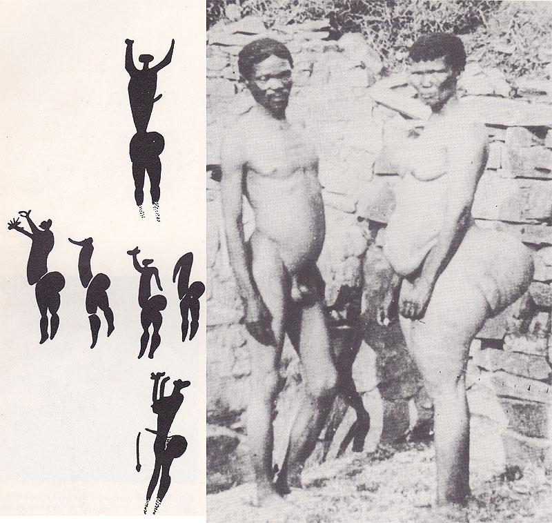 bushmen women sex pics